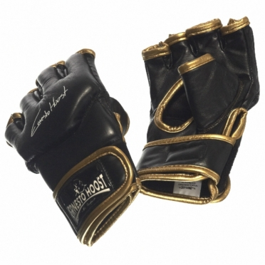 Ernesto Hoost Free Fight Ultra Light MMA gloves