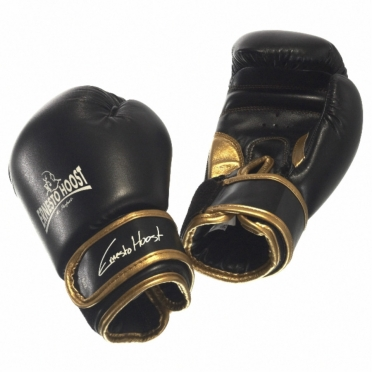 Ernesto Hoost Kids boxing gloves