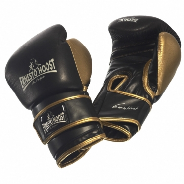 Ernesto Hoost Super-Tech boxing gloves