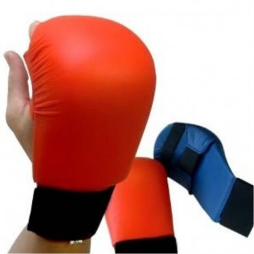 Nihon karate gloves red/blue