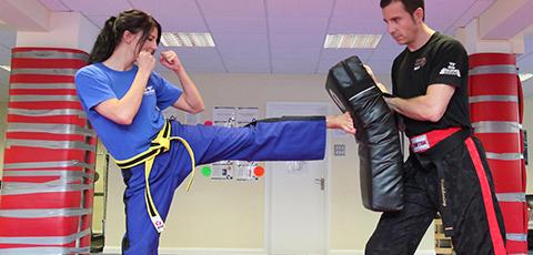 Kicking/punching pads