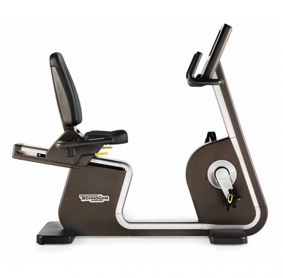 TechnoGym recumbent bike Artis Recline Unity 3.0 used  BBTGARU3