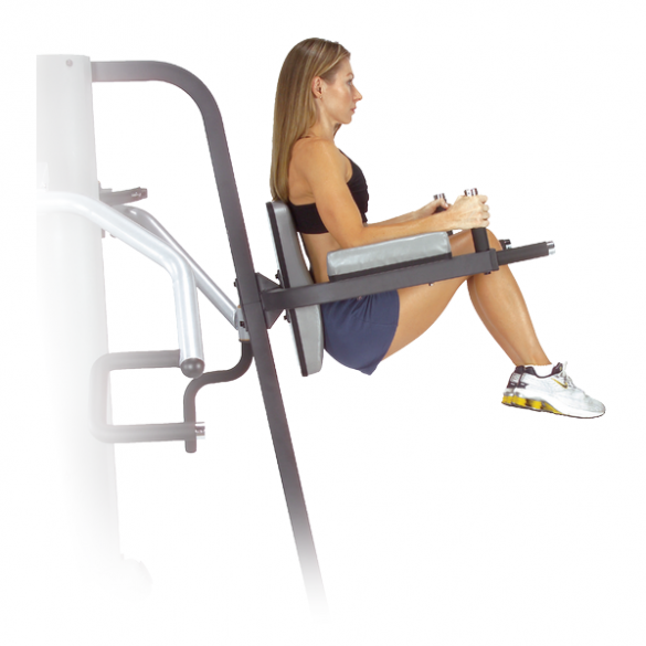 Body Solid Vertical Knee Raise and Dip Station for G9S (GKR9)  GKR9