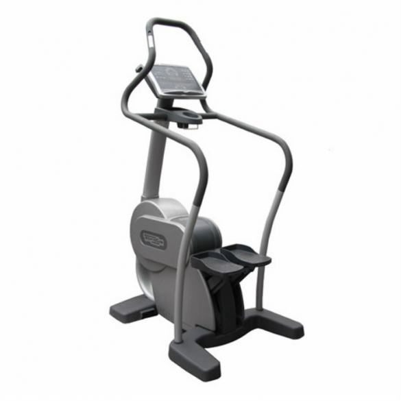 TechnoGym stepper Step Excite 700i classic silver  BBTGSTE700IC